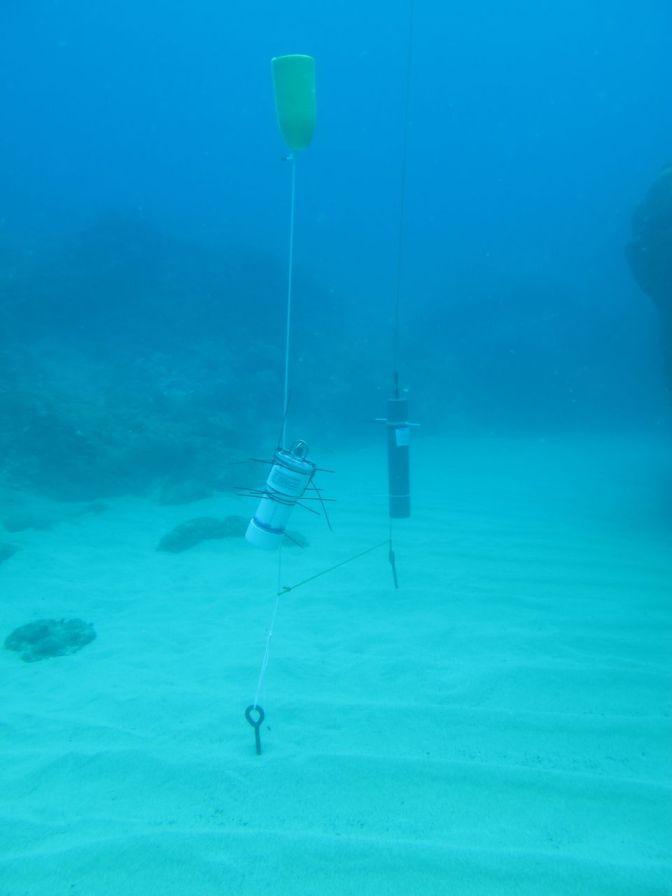 Underwater At Last