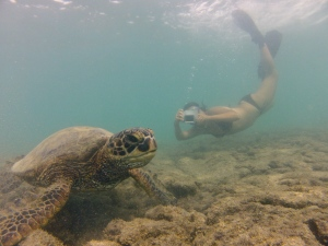 Pregnant and didn't know it yet, last week in Hawaii after our six month field work odyssey.