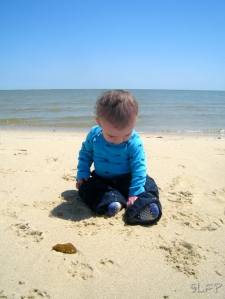 Perhaps the most important thing our son has taught us is to take joy in the little things