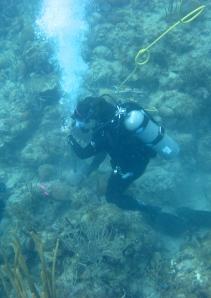 Lauren drilling a coral core