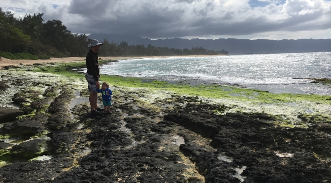Family Fieldwork V2.0: Notes from the Field