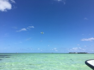 The NASA ER-2 aircraft flies over us collecting hyperspectral imagery of Kaneohe Bay, while we collect acoustic data & ecological surveys below the surface.