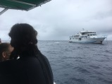 Returning to Yemaya after a dive